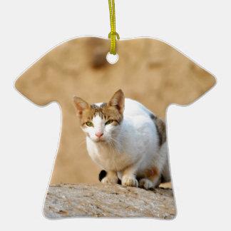 Gato Ornatos