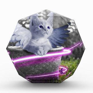 gato del ángel