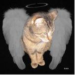 Gato del ángel (Lucian) Esculturas Fotograficas