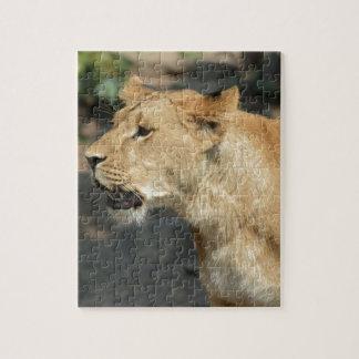 Gato del animal salvaje del león puzzle
