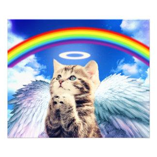 gato del arco iris fotografías