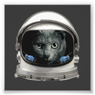 Gato del astronauta del casco de espacio impresiones fotograficas