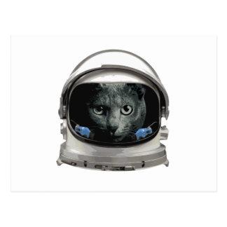 Gato del astronauta del casco de espacio postal