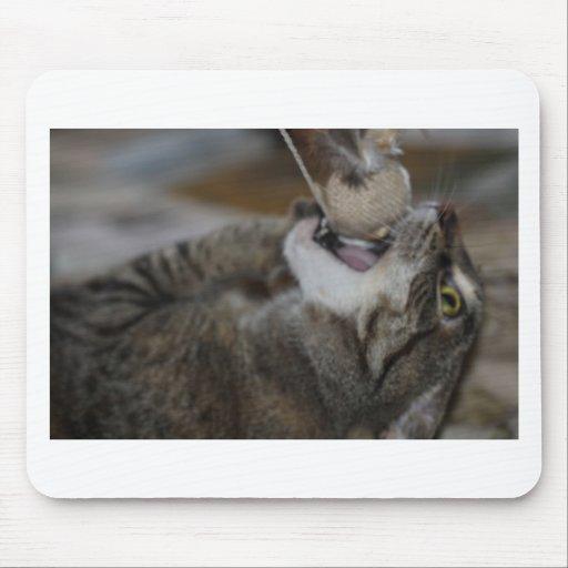 Gato del ataque alfombrilla de ratón