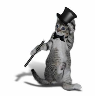 Gato del baile de golpecito fotoescultura vertical
