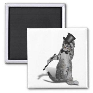 Gato del baile de golpecito imán cuadrado