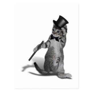 Gato del baile de golpecito tarjetas postales