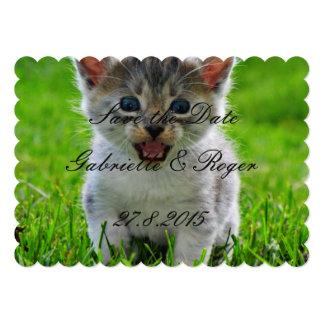 Gato del bebé invitaciones personalizada