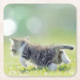 Gato del bebé que corre en campo de hierba posavasos de cartón cuadrado