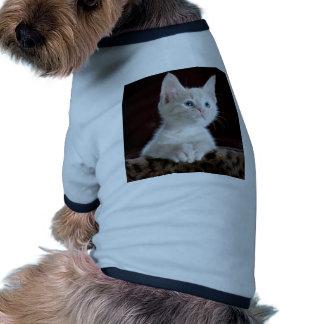 Gato del bebé camiseta con mangas para perro
