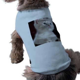 Gato del bebé playera sin mangas para perro