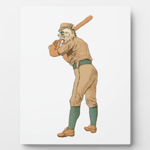 gato del béisbol del vintage placas para mostrar
