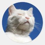 Gato del blanco de Tom Pegatina Redonda
