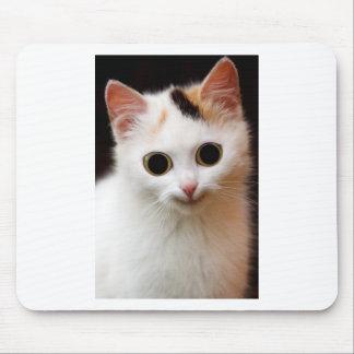Gato del blanco del gatito alfombrillas de ratones