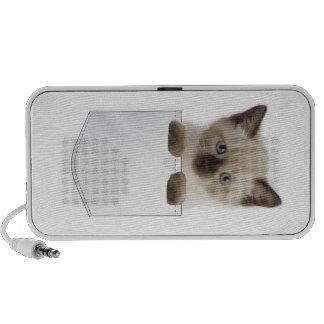 Gato del bolsillo laptop altavoz