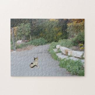 Gato del camino del lago stow rompecabezas