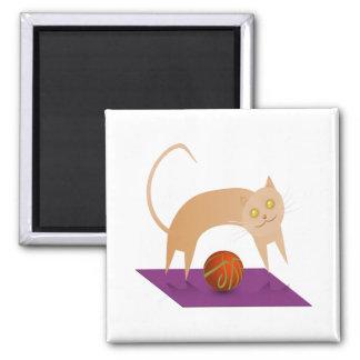 Gato del canela imán cuadrado
