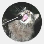 Gato del canto pegatina redonda