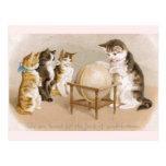 Gato del cartógrafo y tres gatitos postal