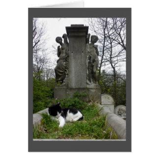 Gato del cementerio tarjeta de felicitación