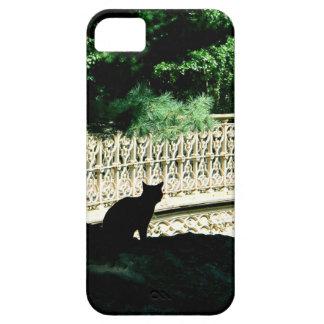 Gato del Central Park iPhone 5 Funda