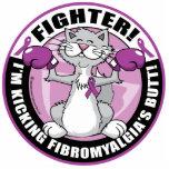 Gato del combatiente del Fibromyalgia Esculturas Fotograficas