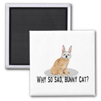 Gato del conejito triste imán cuadrado