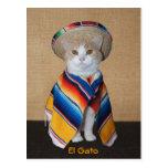 Gato del EL Gato en sombrero y Serape Tarjeta Postal
