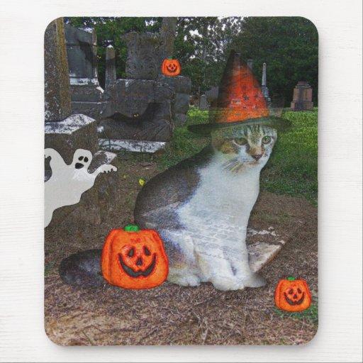 Gato del fantasma alfombrilla de ratón