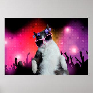 Gato del fiesta póster