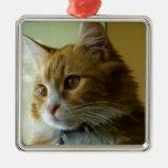 gato del gatito adorno
