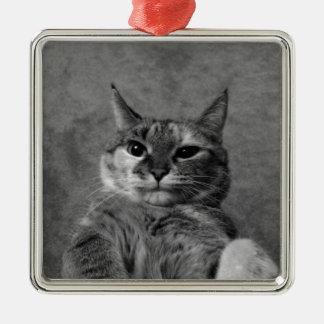Gato del gatito adorno navideño cuadrado de metal