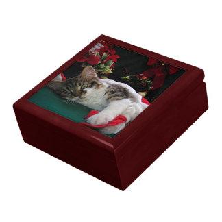 Gato del gatito del bebé del navidad, gatito obser caja de recuerdo