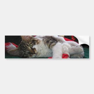 Gato del gatito del bebé del navidad, gatito obser etiqueta de parachoque