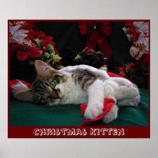 Gato del gatito del bebé del navidad, gatito obser impresiones