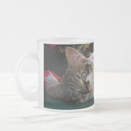 Gato del gatito del bebé del navidad, gatito obser taza cristal mate