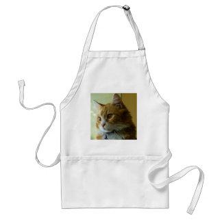 gato del gatito delantal