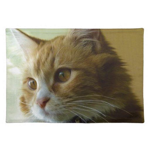 gato del gatito manteles individuales