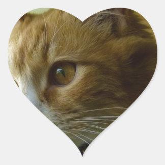 gato del gatito pegatina en forma de corazón