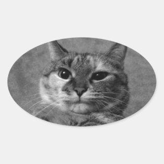 Gato del gatito pegatina ovalada