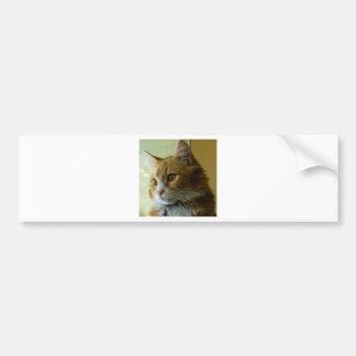 gato del gatito pegatina para auto