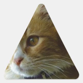 gato del gatito pegatina triangular