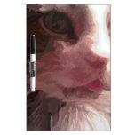 Gato del gatito pizarras