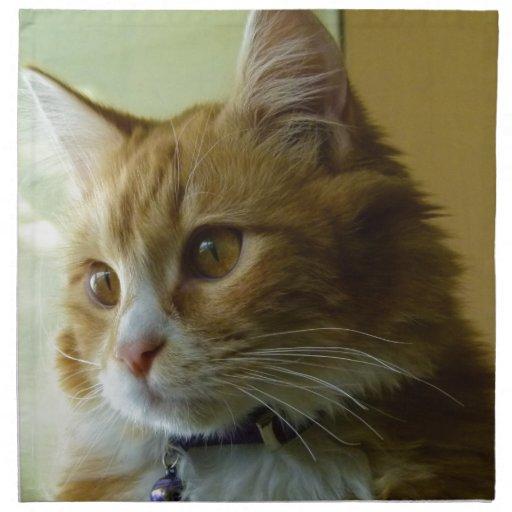 gato del gatito servilleta de papel