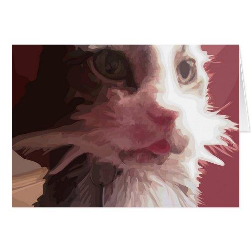 Gato del gatito tarjetas