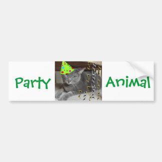 Gato del gris del juerguista pegatina de parachoque