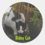 Gato del hidey de la etiqueta engomada