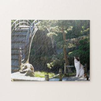 Gato del jardín de té rompecabezas con fotos