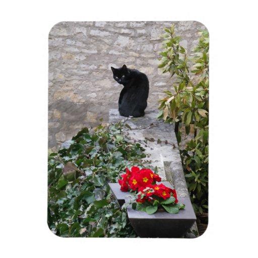 Gato del jardín iman de vinilo