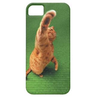 Gato del jengibre que estira hacia fuera la pata funda para iPhone 5 barely there